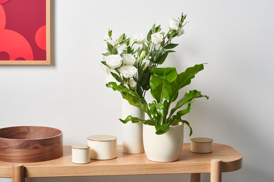 Fresh plants on table near boxes