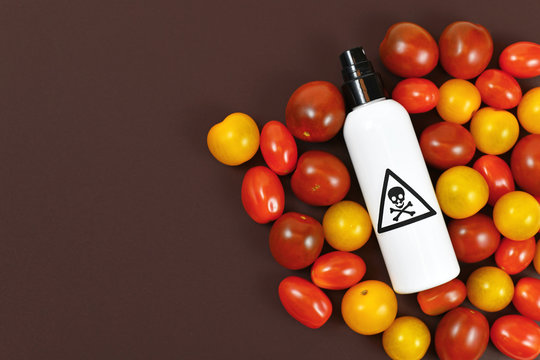 Concept for usage of dangerous pesticides in agricultural food products with tomatoes and spray bottle with poisonous warning label with skull on dark background with blank copy space