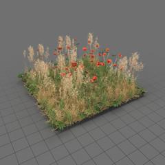 Poppy meadow patch