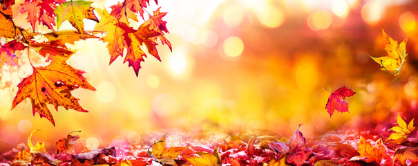 Red Leaves At Sunset With Defocused Lights - Abstract Autumn Background