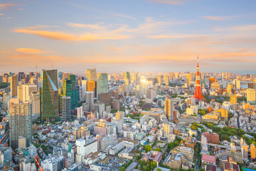 Fotomurales - Tokyo skyline  with Tokyo Tower in Japan