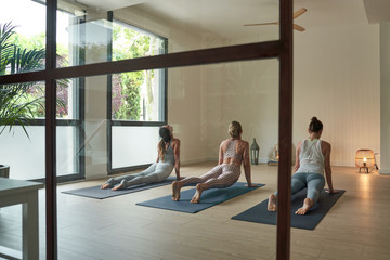 Through glass back view of of unrecognizable fit female athletes in sportswear stretching abdomens during yoga session in spacious studio