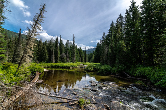 Lion Creek at Priest Lake, Idaho