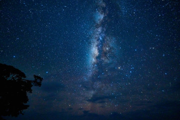 Milky way in the southern sky Fotomurales