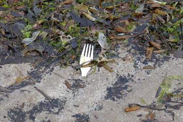 plastic fork in sand