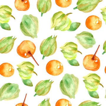 Seamless pattern with ashwagandha. Ayurvedic herbs. Ayurveda. Design of packaging paper and fabrics. Cute pattern with plants and berries. Ashwagandha for dress design, clothing, t-shirts.