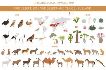 Obraz Desert biome, xeric shrubland natural region infographic. Terrestrial ecosystem world map. Animals, birds and vegetations design set - fototapety do salonu