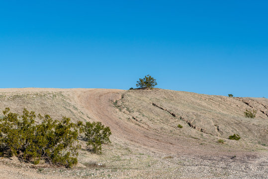A sand dune in the Southern California Sonoran Desert, USA, in the spring, featuring tire marks going up on a blue sky, cloudless day and with copy-space in the sky