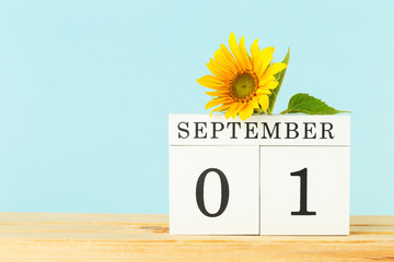 Wooden calendar on table. 1 September and a yellow sunflower flower on wooden table, copy space. Hello autumn or fall concept