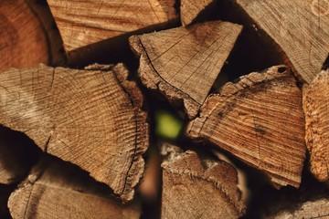 Photo sur Aluminium Texture de bois de chauffage Stacks of firewood in the sawmill. Pile of firewood. Firewood wall. Wood pattern.