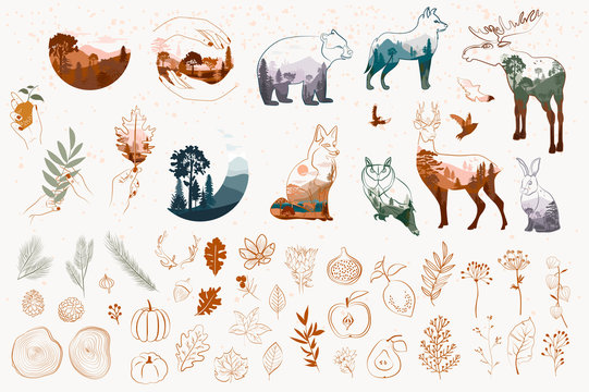 Set of one line style minimalistic autumn objects. Abstract Forest animals, tree, plants, leaf.  Editable vector illustration.