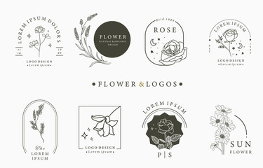 Beauty occult logo collection with geometric,rose,moon,star,flower.Vector illustration for icon,logo,sticker,printable and tattoo