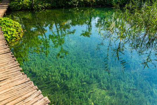 Pathway over the lake in the beautiful forest in Plitvice lakes National Park, Croatia. Nature landscape
