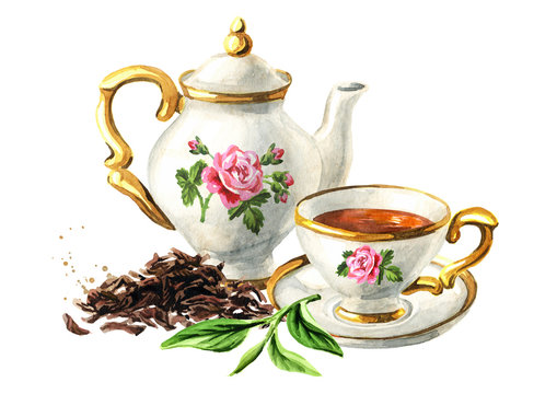 Teapot, cup of tea and Heap of dry tea brew and fresh green tea leaf. Hand drawn watercolor illustration, isolated on white background