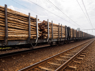 Train trucks on a railway line loaded with timber logs ready for transport to a paper mill