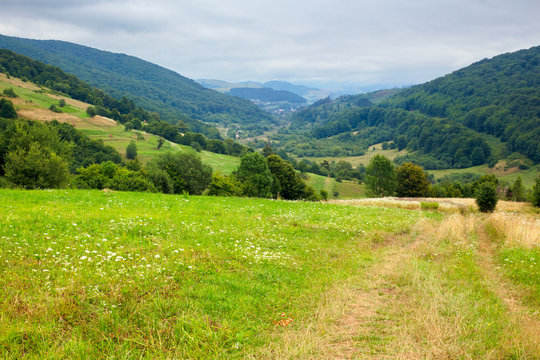 country road through rural field. suburban summer landscape in mountains. village in the distant valley. cloudy day