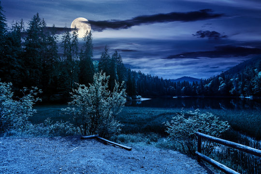 scenery around the lake in mountains at night. spruce forest on the shore. reflection in the water in full moon light. weather with clouds on the sky
