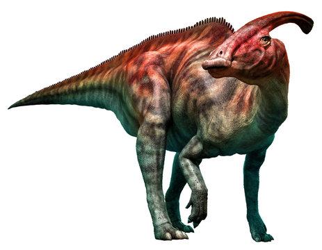Parasaurolophus walkeri standing 3D illustration