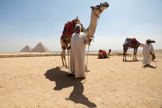 A man wearing a protective face mask holds reins of a camel, following the outbreak of the coronavirus disease (COVID-19), in Cairo