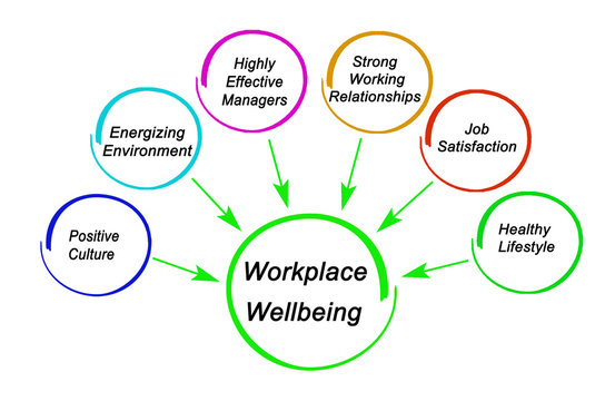 Six drivers of workplace wellbeing