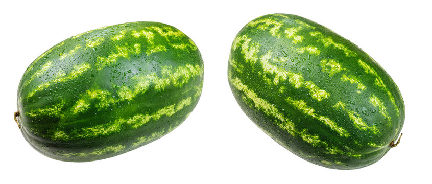 Large watermelons on a white background. Isolated