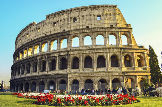 Beautifull red flowers and green grass in roman Coliseum