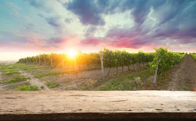 Poster de jardin Melon Chianti vineyard landscape in Tuscany, Italy field