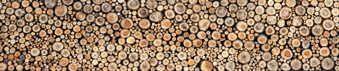 Round wooden slices, background texture. Panorama. High detail