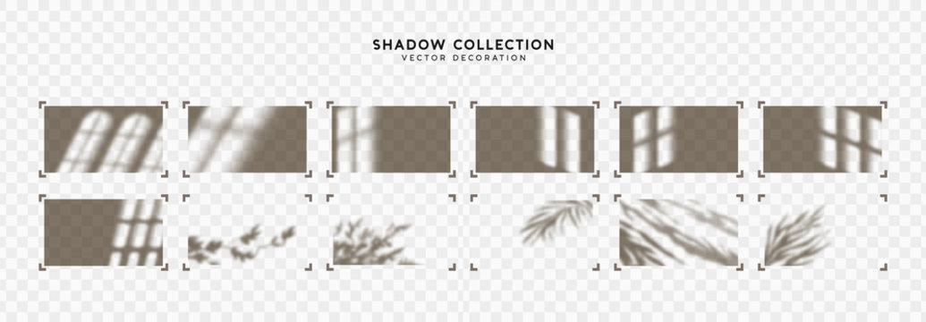 Shadow overlay Window frames and leaves. Effect light transparent shadow. Realistic creating reflective effect illusions. Overlay for adding scene lighting to your images. Vector illustration.