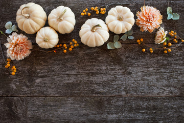 White pumpkins, dahlias and hydrangeas on a wooden background. Space for text.