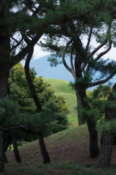 Tumuli Park (Daereungwon Tomb Complex) – Gyeongju, South Korea.