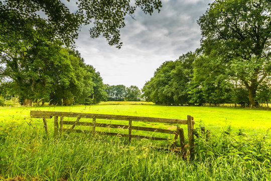 Landscape in Dutch province of Drenthe with access gate to meadows against background of forest and sky with heavy clouds