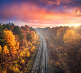 Aerial view of beautiful railroad in autumn forest in foggy sunrise. Industrial landscape with railway station, blue sky with red clouds, trees with orange leaves, fog. Top view of railroad in fall