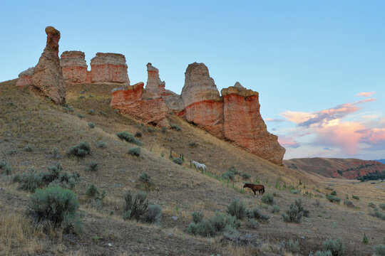 Horses and the Witches Towers in Northern Utah, near Henefer.
