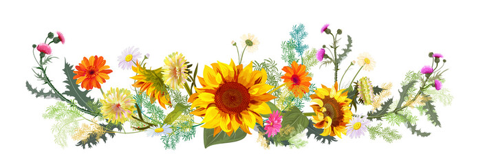 Horizontal autumn's border: sunflowers, yellow asters, thistles, gerbera, daisy flowers, small green twigs on white background. Digital draw, illustration in watercolor style, panoramic view, vector