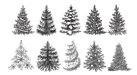 Christmas tree. Hand drawn illustration.