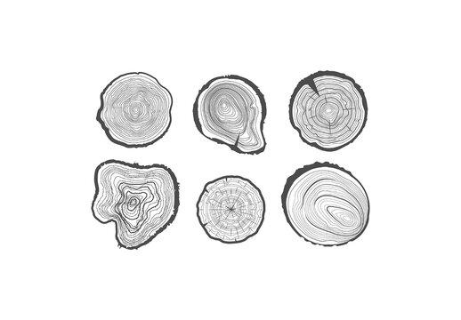 Set of  Six Cuts of a Tree