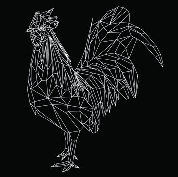 low poly animal rooster line vector model