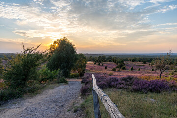 Panorama of the Lüneburg Heath