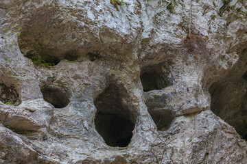 Entrance of caves with strange and curious morphologies, formed by karst, Monte Resettum, Friuli, Italy
