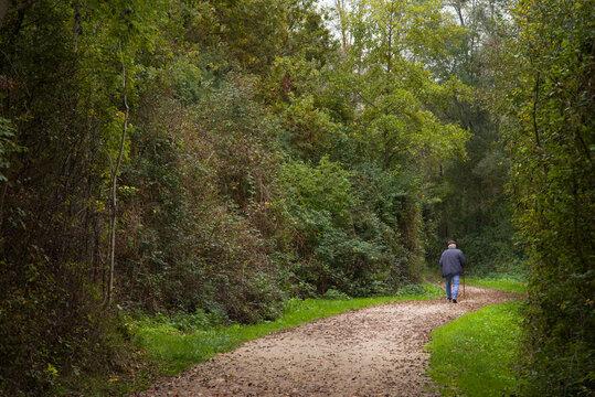 une personne  âgée marchant sur un chemin dans la forêt. Senior adulte marchant dans les bois