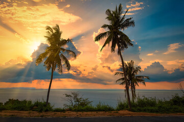 Wall Mural - Silhouette coconut palm trees on beach at sunset.