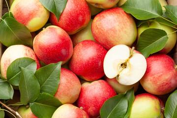 Ripe garden apple fruits