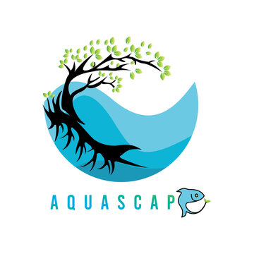 Aquascape Stock Photos And Royalty Free Images Vectors And Illustrations Adobe Stock