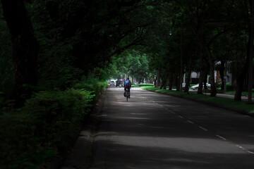 Cyclists through dense trees