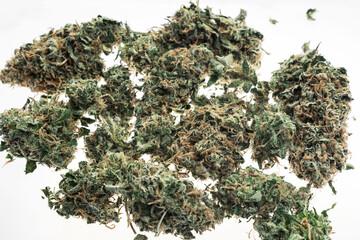 medical marijuana cannabis buds closeup on white studio background