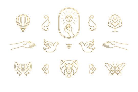 Vector line elegant decoration design elements set - bear head and gesture hands illustrations minimal linear style