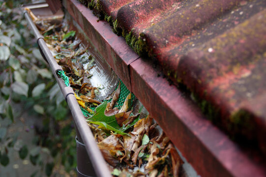 Plastic guard in gutter trough on a house roof