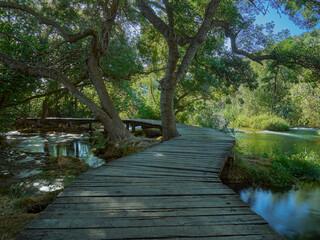 Foto auf Acrylglas Forest river A wooden footbridge in a forest in the Krka National Park. Dalmatia, Croatia
