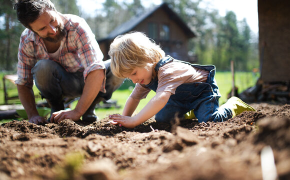 Father with small son working outdoors in garden, sustainable lifestyle concept.
